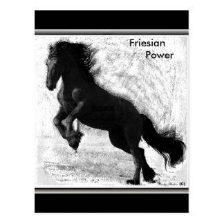 Friesian Power Postcard #3