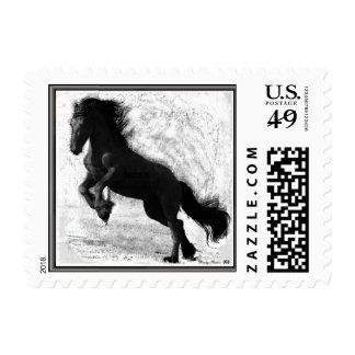 Friesian Power Postcard Stamps