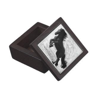 Friesian Power Premium Gift Box