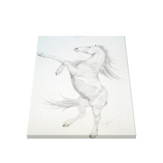 Friesian rearing Stretched Canvas Print