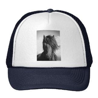 Friesian stallion in the wind. mesh hats