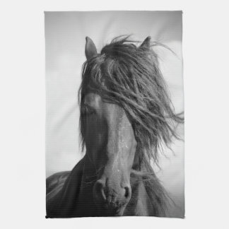 Friesian stallion in the wind. kitchen towels