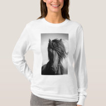Friesian stallion in the wind. T-Shirt