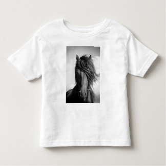 Friesian stallion in the wind. shirts