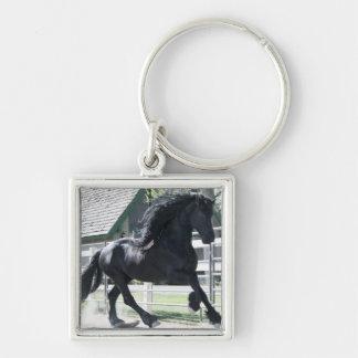 Friesian Stallion Keychain