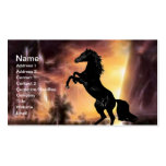 Friesian Stallion rearing Business Card