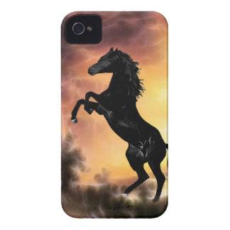Friesian stallion rearing blackberry bold case