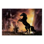 Friesian Stallion rearing Posters