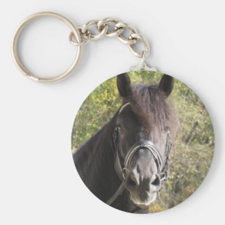 Friesian Stallion Rubin Basic Round Button Keychain