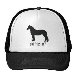 Friesian Trucker Hat