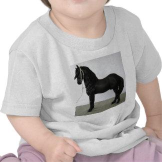 Friesian Tshirt