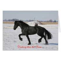 Friesian Winter Holiday Card