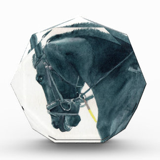 Friesian X Horse 2 Acrylic Award