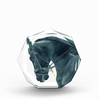 Friesian X Horse 2 Awards