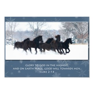 Friesian Yearlings Christmas Card