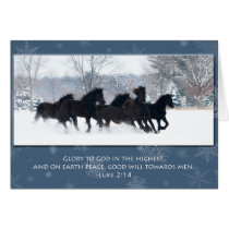 Friesian Yearlings Christmas Card
