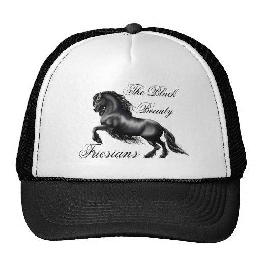 Friesians, black letter hat