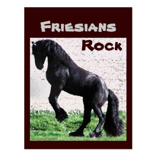 Friesians Rock Postcards