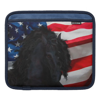 Frieze horse/Friesian with USAS flag iPad Sleeve
