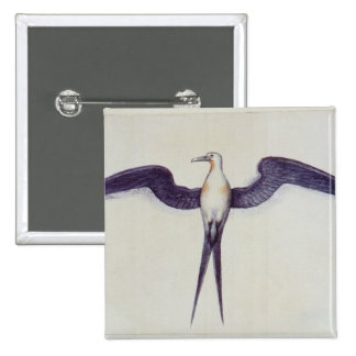 Frigate Bird Button