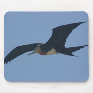 Frigate Bird Mouse Pad