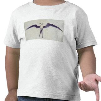 Frigate Bird Shirts