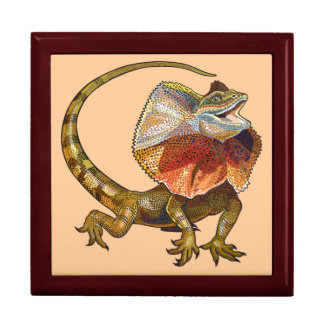 frill necked lizard gift box