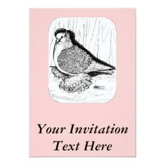 Frillback Pigeon 1978 Card