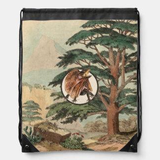 Frilled Lizard In Natural Habitat Illustration Cinch Bag