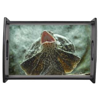 Frilled Lizard Serving Platters