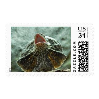 Frilled Lizard Stamp