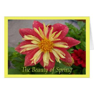 Frilly Dahlia Card