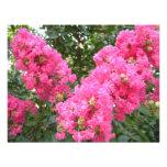 Frilly Pink Flowers Custom Invitations