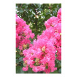 Frilly Pink Flowers Stationery Paper
