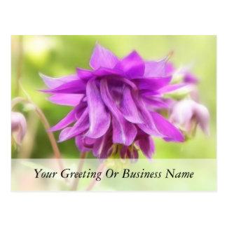 Frilly Purple Aquilegia (Columbine) Postcard