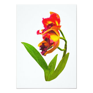 Frilly Red and Yellow Orchids Card