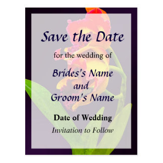 Frilly  Red and Yellow Orchids Save the Date Postcard