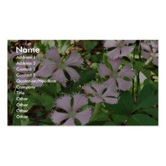 Fringed campion in full flower, endangered Silene Business Card Template