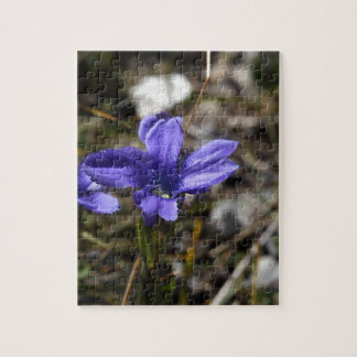 Fringed Gentian Jigsaw Puzzle
