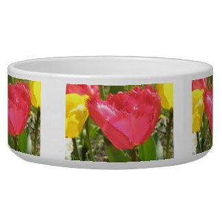 Fringed Tulips Dog Bowl