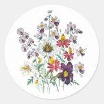 Fringeflowers and Velvet Trumpet Flowers Classic Round Sticker