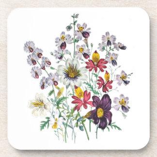 Fringeflowers and Velvet Trumpet Flowers Coaster