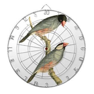 Fringilla oryzivora birds dart boards