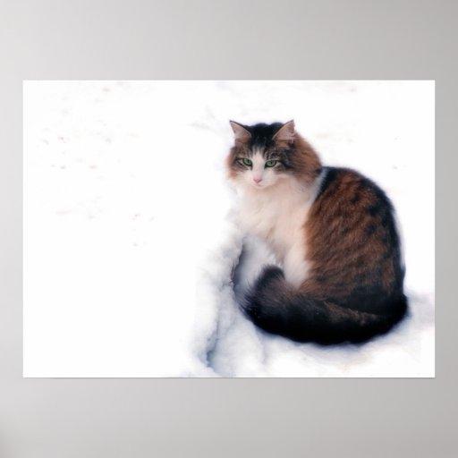 Frío de la nieve póster