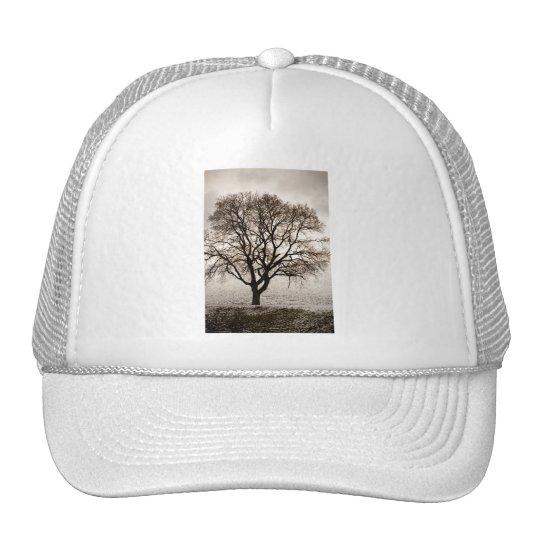 frío y precioso gorra