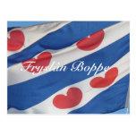 Frisian Flag Fryslân Boppe Postcard Kaart