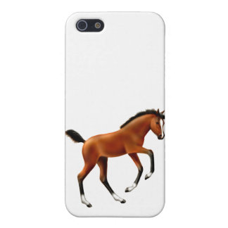 Frisky Bay Foal iPhone Case iPhone 5 Covers