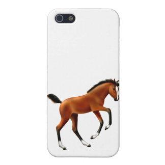 Frisky Bay Foal iPhone Case