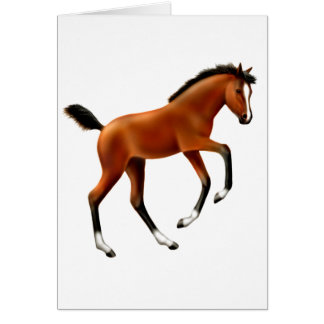 Frisky Foal Card