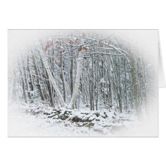 Frist Snow Card
